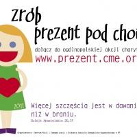 plakat_PPCH_2011